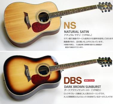 おすすめ アコギ アコギの初心者入門講座【アコースティックギター博士】